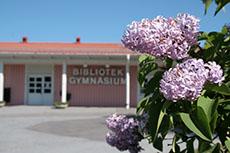 Gymnasium/Bibliotek, Norsjö