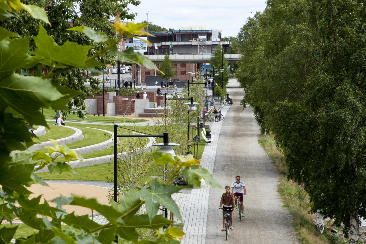 Dejta Umeå Kommun