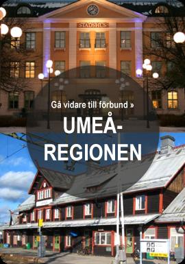 Bild, Umeåregionen